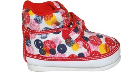 Shop & Shoppee Canvas Shoes
