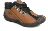 Pasco W-1 Running Shoes (Brown)