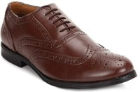 Hirel's Brown Lace Up Shoes(Brown)