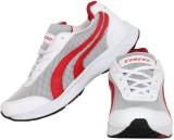Tracer White Running Shoes (White, Blue)