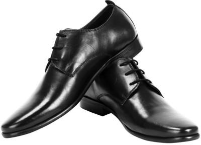 Moladz Dino Lace Up Shoes