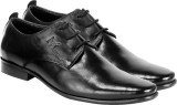 Moladz Dino Lace Up Shoes (Black)