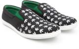 Drex Canvas Shoes (Black)