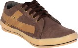 Aster Chief Casuals (Brown, Beige)
