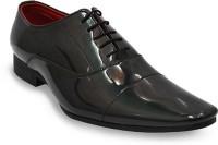 Lippy 6602-1 Lace Up Shoes(Black)