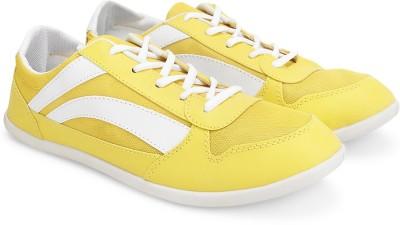 TerraVulc Canvas Shoes