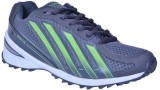 CLB Walking Shoes (Grey, Green)