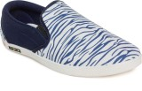 Maxis Running Shoes (Blue)