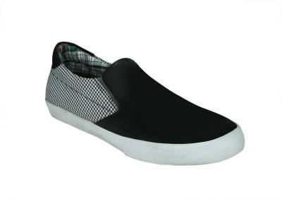 Entice Canvas Shoes