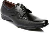 Juan David 67 Lace Up Shoes (Black)
