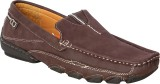 StyleToss Casual Loafers (Brown)