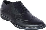 Footoes Semi Formal Brogue Corporate Cas...