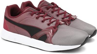 Puma XT S Blur Sneakers(Maroon) at flipkart