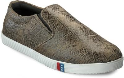 Bags Craze Stylish Bc-Onls-036 Canvas Shoes