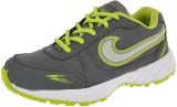 Poddar Vipod Cricket Shoes (Grey, Green)