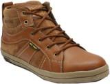 Big Wing Casual Shoes (Tan)