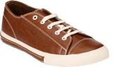 Brown Sugar Pattern Casual Shoes (Beige)