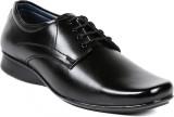 Ten Lace Up Shoes (Black)