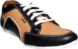 Blackwood Casuals Shoes (Black)