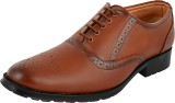 Enzo Cardini Lace Up (Brown)