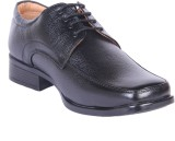 Kennady Officious Black Derby Lace Up (B...