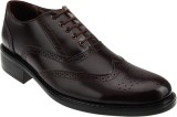 Tycoon Lace Up Shoes (Brown)