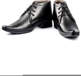 DK Derby Kohinoor Lace Up Shoes (Black)