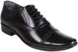 Balujas Lace Up (Black)