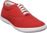 Stylon Boys (Red)