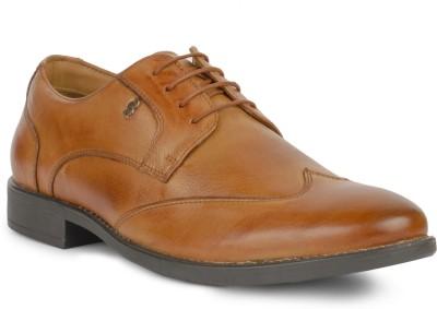 Foxx Seven Lace Up Shoes