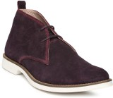 Harvard Casual Shoes (Purple)