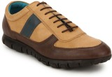 Arkour Cresswell Sporty Oxford Casual Sh...
