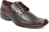 Regalia Lace Up Shoes (Brown)