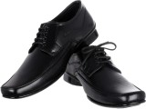 Bob Shoooz Lace Up Shoes (Black)