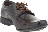 Footista Lavida Lace Up (Brown)