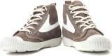 Diesel Draags94 Men Sneakers (Brown, Whi...