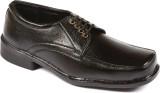 Guardian Lace Up Shoes (Black)