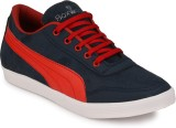 Boxwood Casuals (Red)