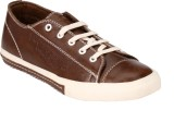 Brown Sugar Pattern Casual Shoes (Brown)