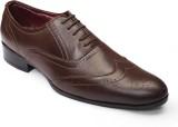 Shoefad Lace Up (Brown)