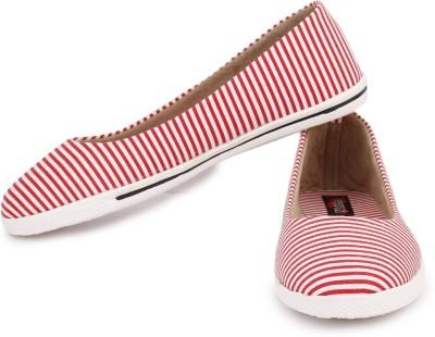 Naisha Canvas Shoes