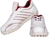 Priya Sports Prcric Cricket Shoes (White...