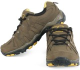 Tracer ST 621 Outdoors (Green)