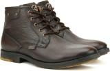 Allen Cooper AC-007 Sneakers (Brown)