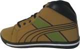 Big Hopp Rockman Casual Shoes (Brown)