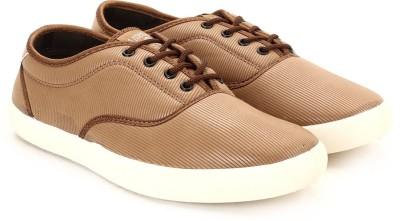 Globalite Stellar Men Sneakers(Brown)