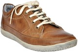 Players Sneakers (Brown)
