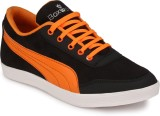 Boxwood Casuals (Orange)
