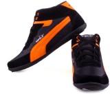DYOZ Boys (Orange)