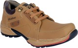 Shoebook Casuals (Brown)